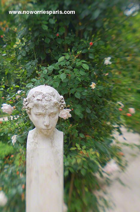 Paris_bagatelle_rosegarden
