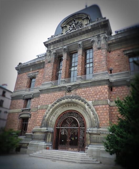 museumnaturalhistory