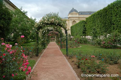 Jardin des Plantes path