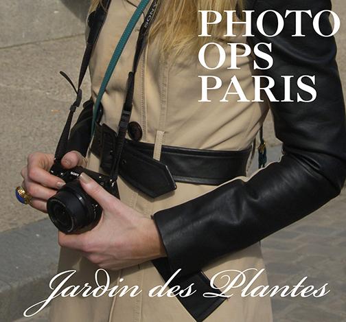 photoJardinDesPlantes