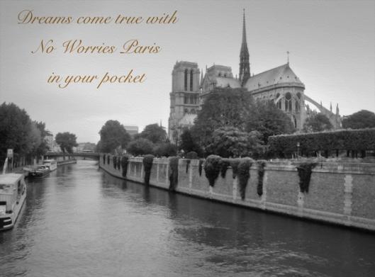 Notre Dame vintage