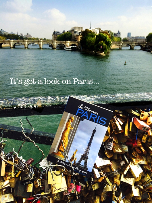 Pont Des Arts bridge Paris