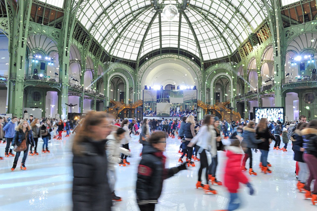 Grand Palais: Paris has largest indoor ice rink | NO WORRIES PARIS