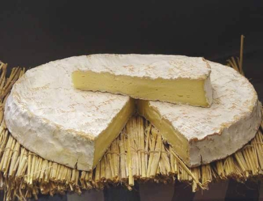 Brie Cheese France
